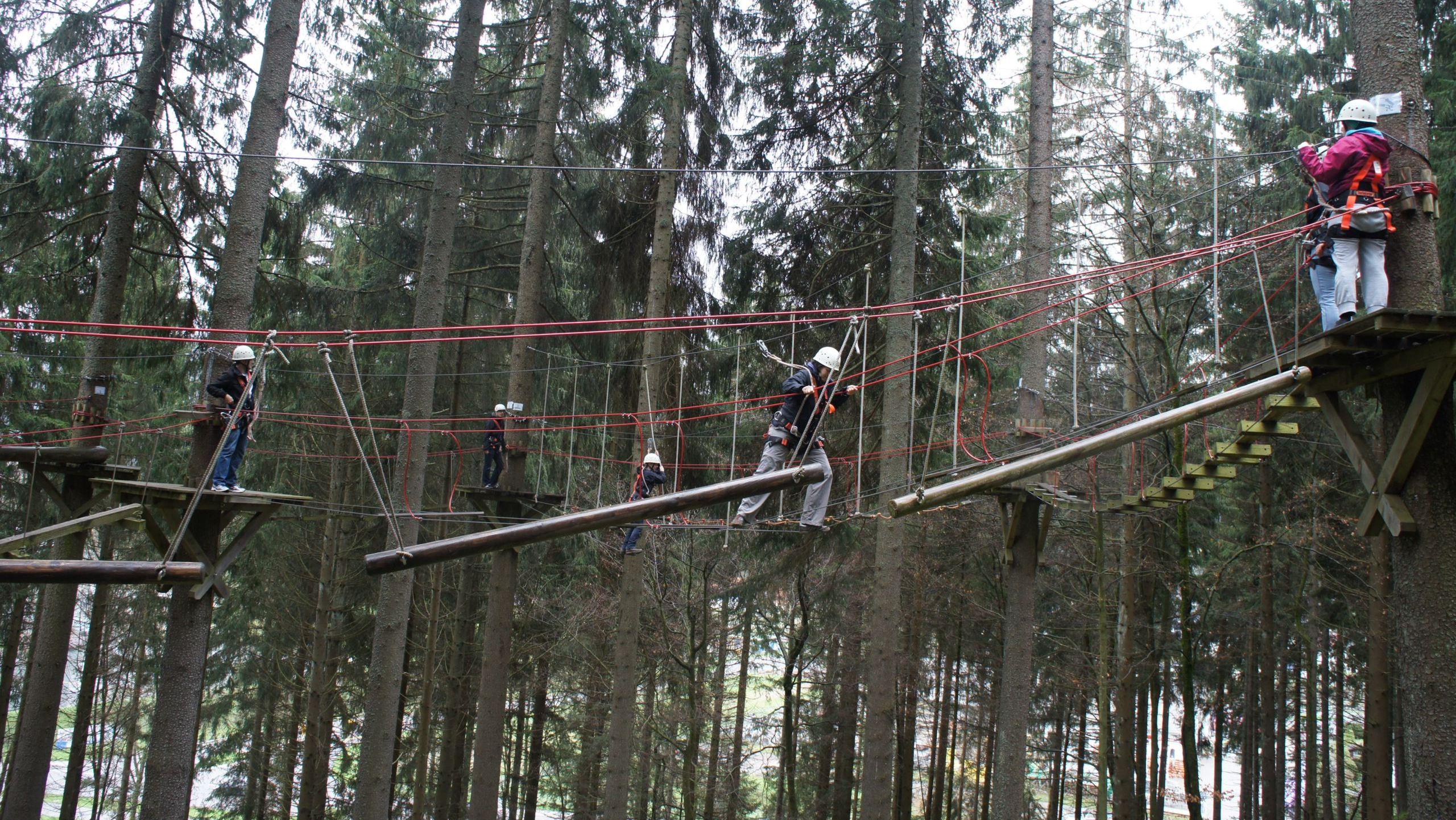 Klettern im Hochseilgarten